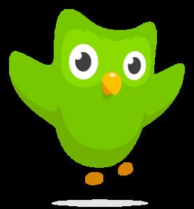 Duolingo - Duo owl